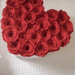 Первые розы для принцессы Ники)